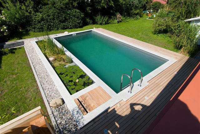 Natural swimming pools ponds for Natural swimming pool australia
