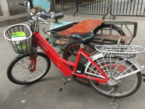 chines-electric-bike-10