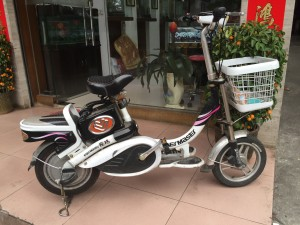 chines-electric-bike-12