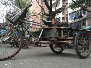 chines-electric-bike-15