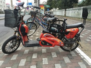 chines-electric-bike-2