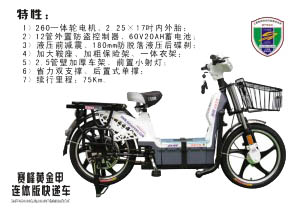 chinese-electric-bike-300x208
